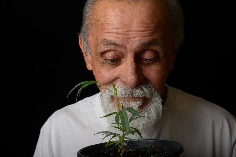 growing your own weed