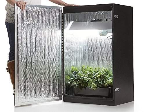 Ящик для марихуаны конопля в гараже фильм