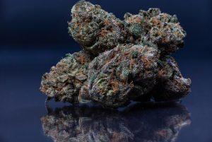 is marijuana a psychedelic